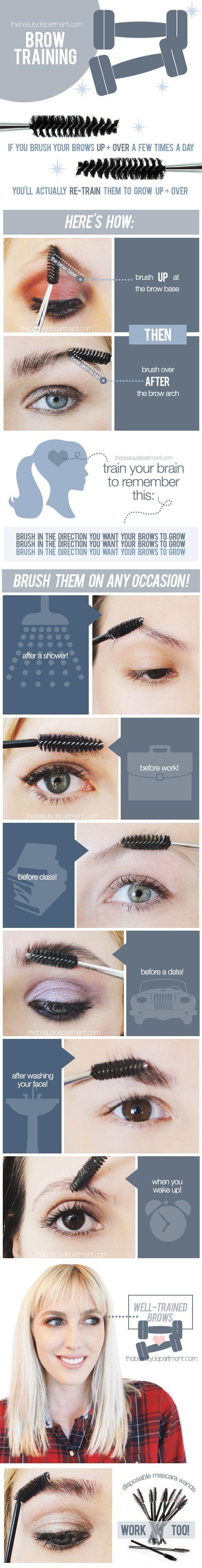 makeupandbody:perfectbrows